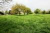 Liebhaber-Objekt / saniertes Bauern-Wohnhaus mit großem Grundstück + Weideland - DSC_0220